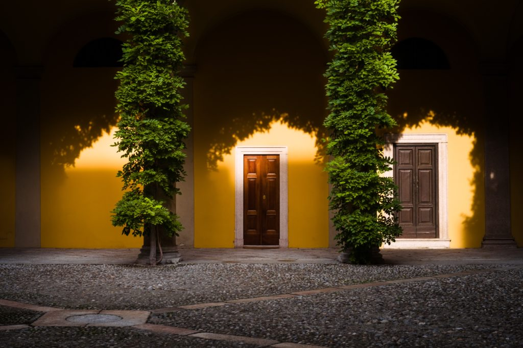 front, front door, home, entrance, yellow, yellow paint, paint, bright, vines