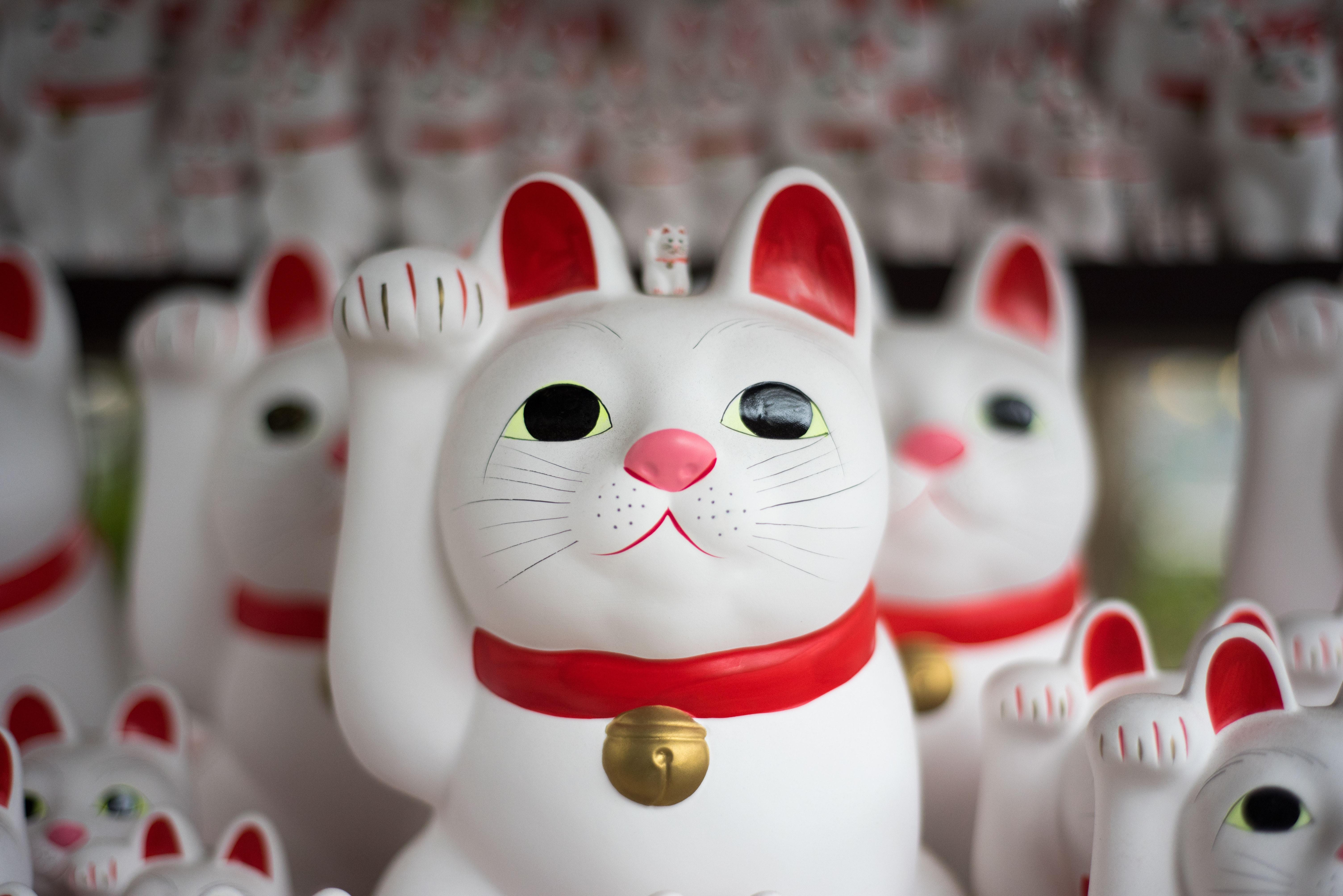 japanese lucky cat feng shui