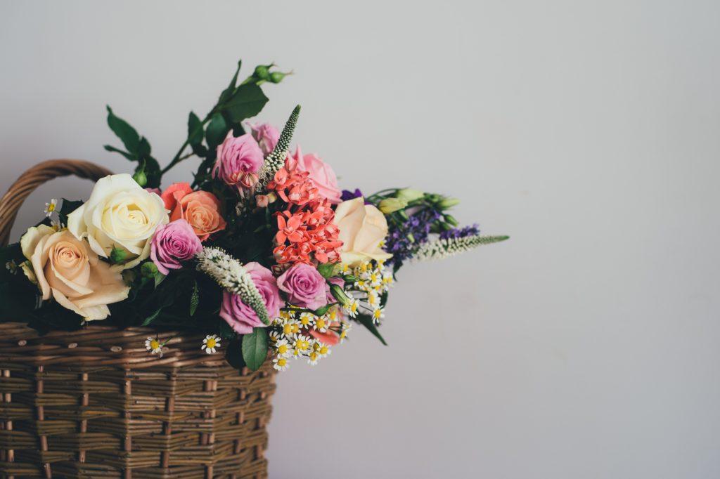 flowers, fresh, color